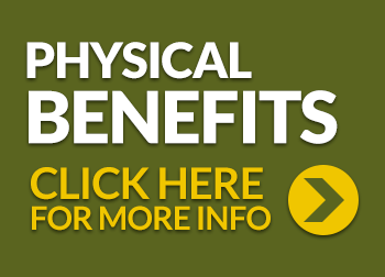 Haylo Hay Feeder - Physical Benefits for your horse 5