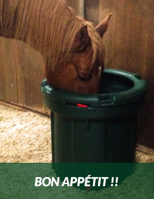 Haylo--Horse-eating-from-Slow-Down-Hay-Feeder-new