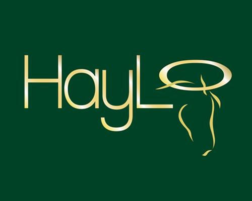 690-x-400---HayLo-Horse Feeder Logo