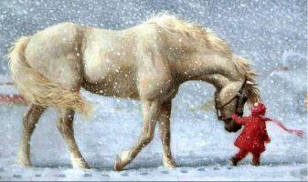 HayLo Christmas