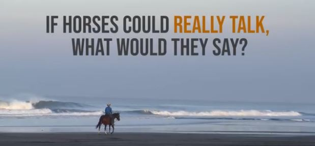 if horses could really talk